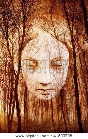 Ghostly female face materialising in misty haunted forest. poster