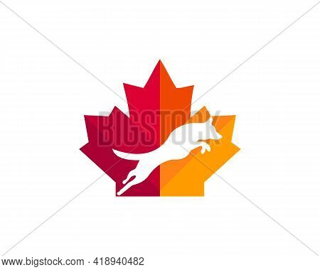 Maple Dog Charity Logo Design. Canadian Pet Logo. Red Maple Leaf With Jumping Dog Vector