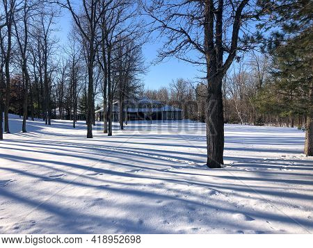 Beautiful Snow Covered Garden Landscape, With Frozen White Layer Over Lawn And Trees Casting Shadows