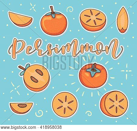 Persimmon - Whole And Pieces - Colored Fruit Set Isolated On Blue Background