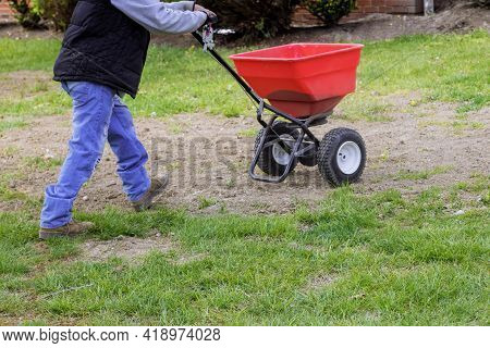 Garden Worker In The Residential Backyard With Sowing Lawn Grass Seeds With A Drop Lawn Spreader