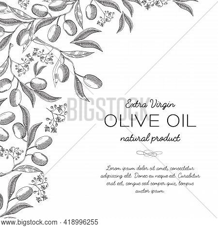 Typography Design Card Doodle With Inscription About Extra Virgin Olive Oil Natural Product Vector I