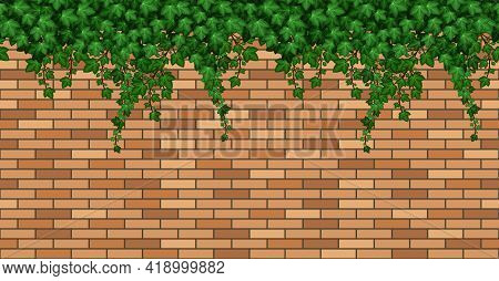 Birck Wall With Ivy Leaves. Summer Green Ivy Foliage On  Bricks, Building Wall Or Fence. Seamless Re
