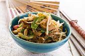 stir fried noodles with vegetables poster