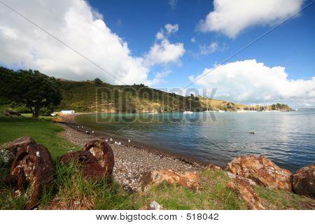 Gravel Beach On Waiheke Island