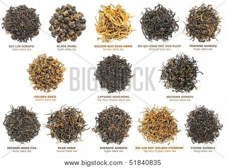 Black Tea Collection