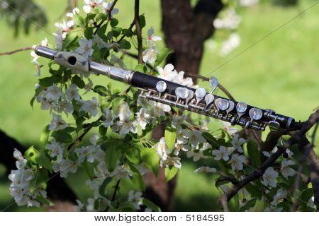 Branch-flute