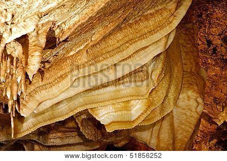 Cave Bones