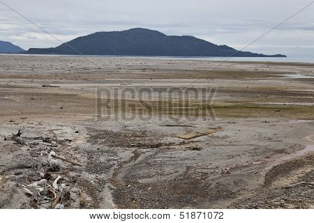 Desolated Landscape With Ashes After Volcano Eruption In Chaiten.