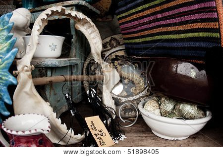 Tiger Shark Jaw