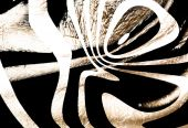 old zebra skin texture with black and white in it poster