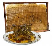 Near a beehive frame a plate with honeycombs and bees on them poster