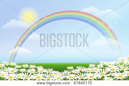 Rainbow and daisies against blue sky