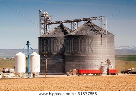 Agricultural Silo Loads Semi Truck With Farm Grown Food Grain