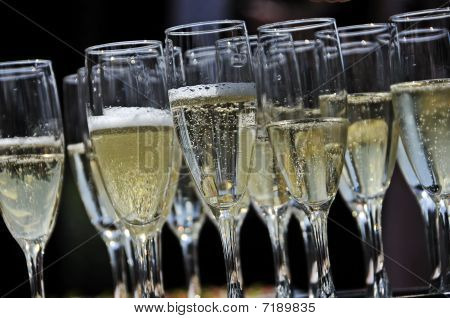 Glasses Of Sparkling Champagne On A Tray Closeup