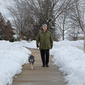 middle aged woman walking dog winter sidewalk poster