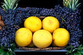 Grapefruit and black grapes