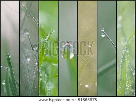 Collage Set Of Macro Water Drops