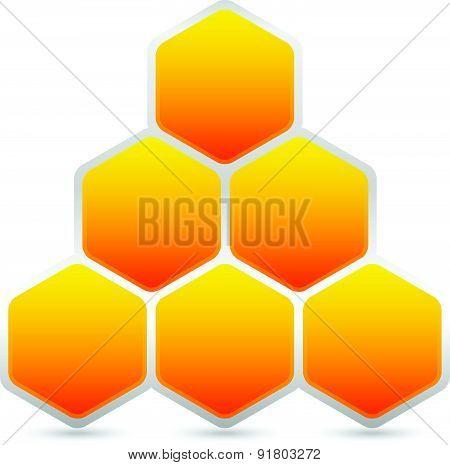Hexagonal Honeycomb, Beehive Element Isolated On White. Vector Illustration.
