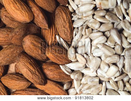 Almond and sunflower healthy seeds background