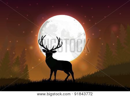 Silhouette of a deer