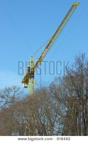 Crane Over Trees