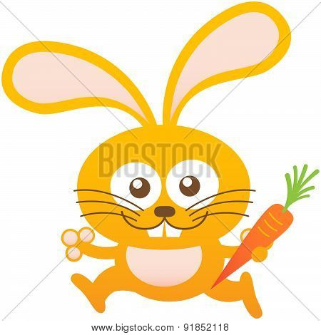 Nice baby rabbit smiling, running and holding a carrot