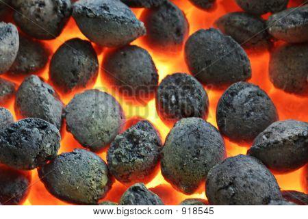 Burning Coals Cloase Up