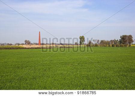Punjabi Landscape With Brickyard