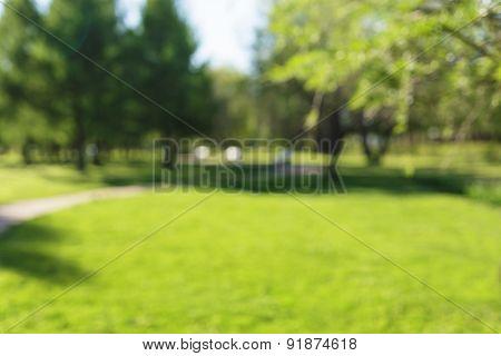 city park bokeh background 50mm lens