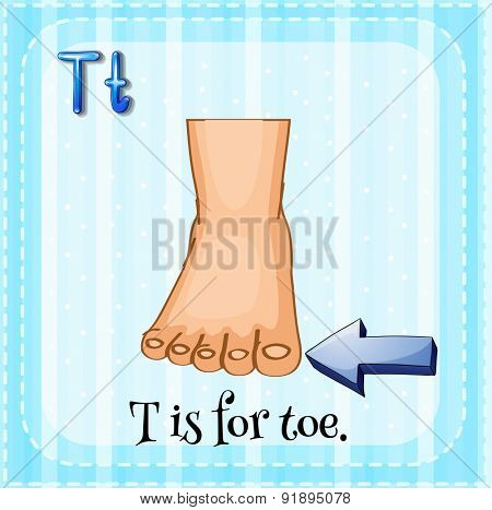 Flashcard letter T is for toe