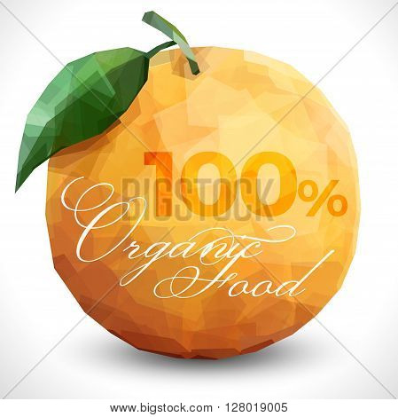 Polygonal orange with text. 100 percent organic food text on the Fresh exotic citrus fruit. poster