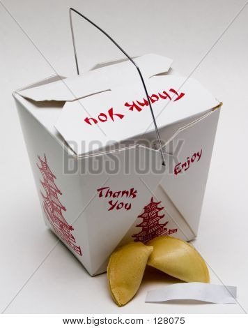Chinese Takeout - With Cookie And Blank Fortune
