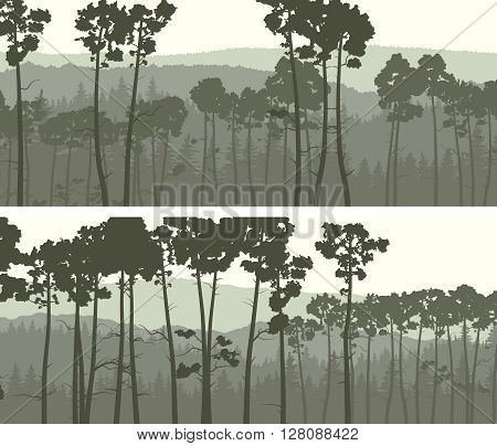 Set of horizontal abstract wide banners of hills coniferous pinewood in green tone.