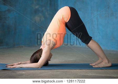 Sporty Beautiful Young Woman Doing Dolphin Pose