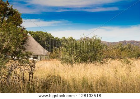 African thatched hut in the bush veld