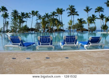 Pool In The Tropics
