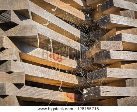 Lumber stacked on the open air and covered with spider web