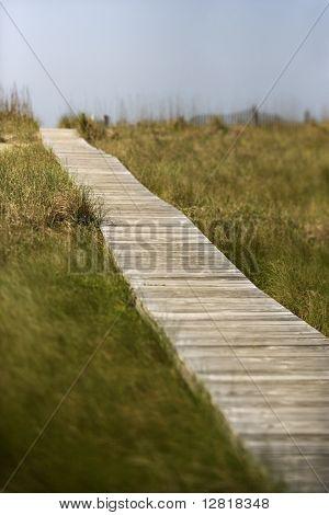 Wooden access path to beach on Bald Head Island, North Carolina.
