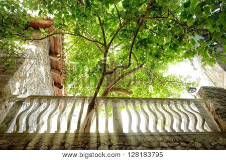 sunbeams filtering through the leaves and columns of a banister in the alleys of Ulcinj Stari Grad, Montenegro