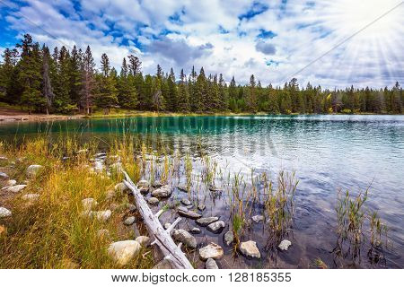 Picturesque circular lake surrounded by pine forests. Canadian Rocky Mountains, lake Annette, Jasper National Park