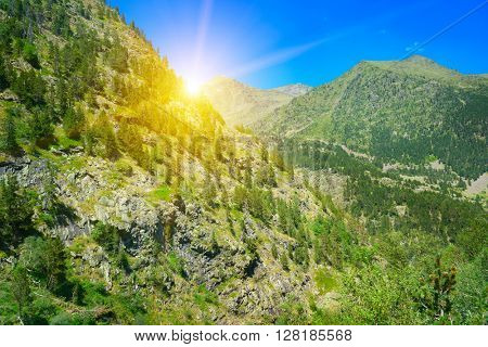 Beautiful sunrise in summer mountains