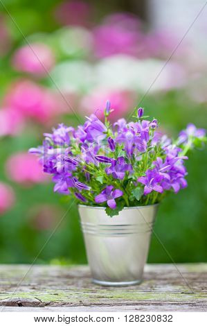 Bouquet of purple flowers in small bucket - vertical