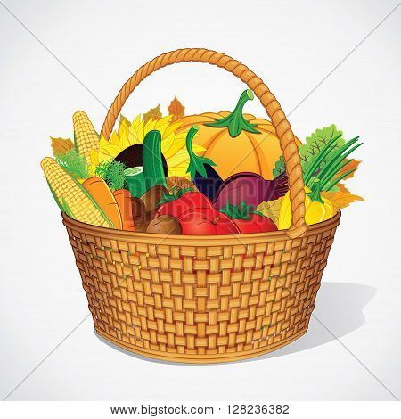 Autumn Fresh Vegetable and Fruits in Basket. Ready for Your Text and Design.