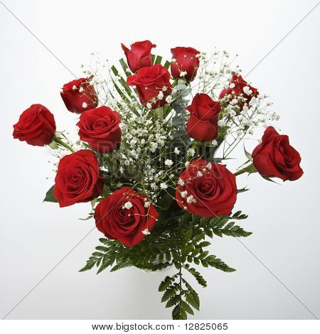 Bouquet of long-stemmed red roses with baby's breath against white background.