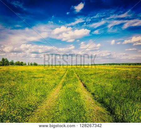 Spring summer background - vintage retro effect filtered hipster style image of  rural road in  green grass field meadow scenery lanscape with blue sky