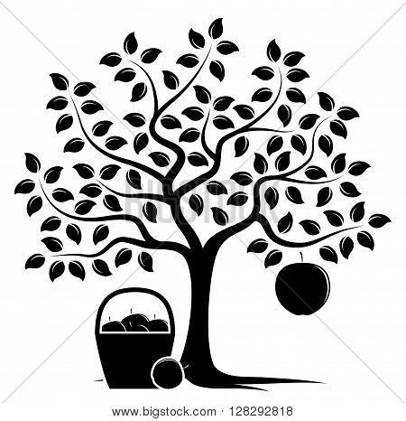 vector apple tree with one big apple and basket of apples isolated on white background