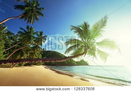 sunset on the beach, Mahe island, Seychelles
