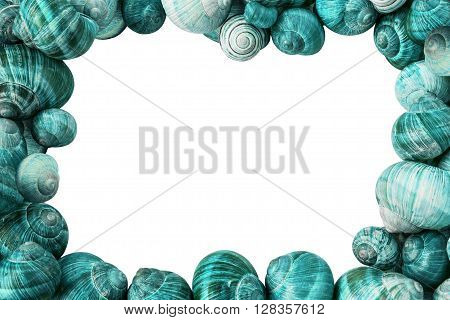 Colorful Cyan Snail Shells Frame on White Background