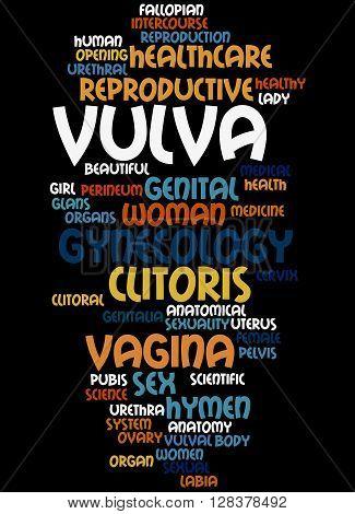 Vulva, Word Cloud Concept 8